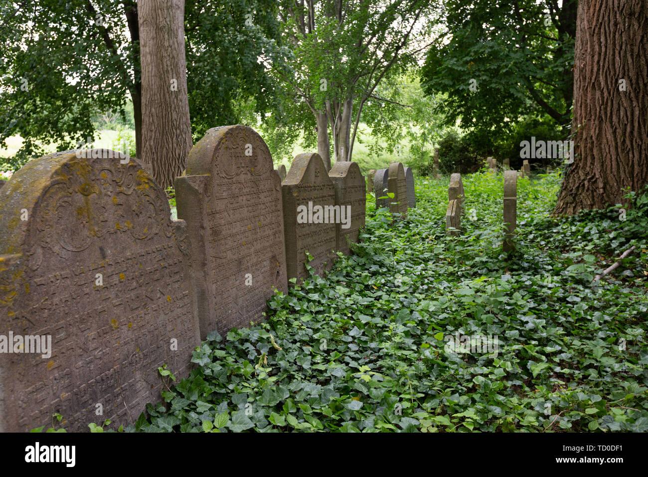 Jewish Cemetery, Bonn Schwarzrheindorf, Germany. - Stock Image