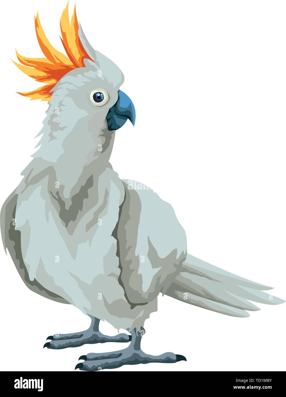 parrot wild cockatoo icon cartoon - Stock Vector