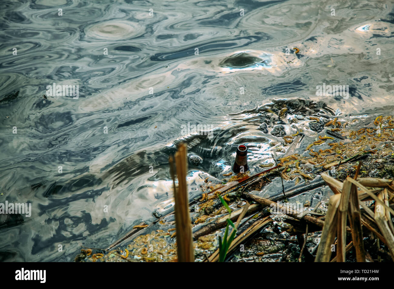 An empty glass bottle floats down a muddy river. - Stock Image
