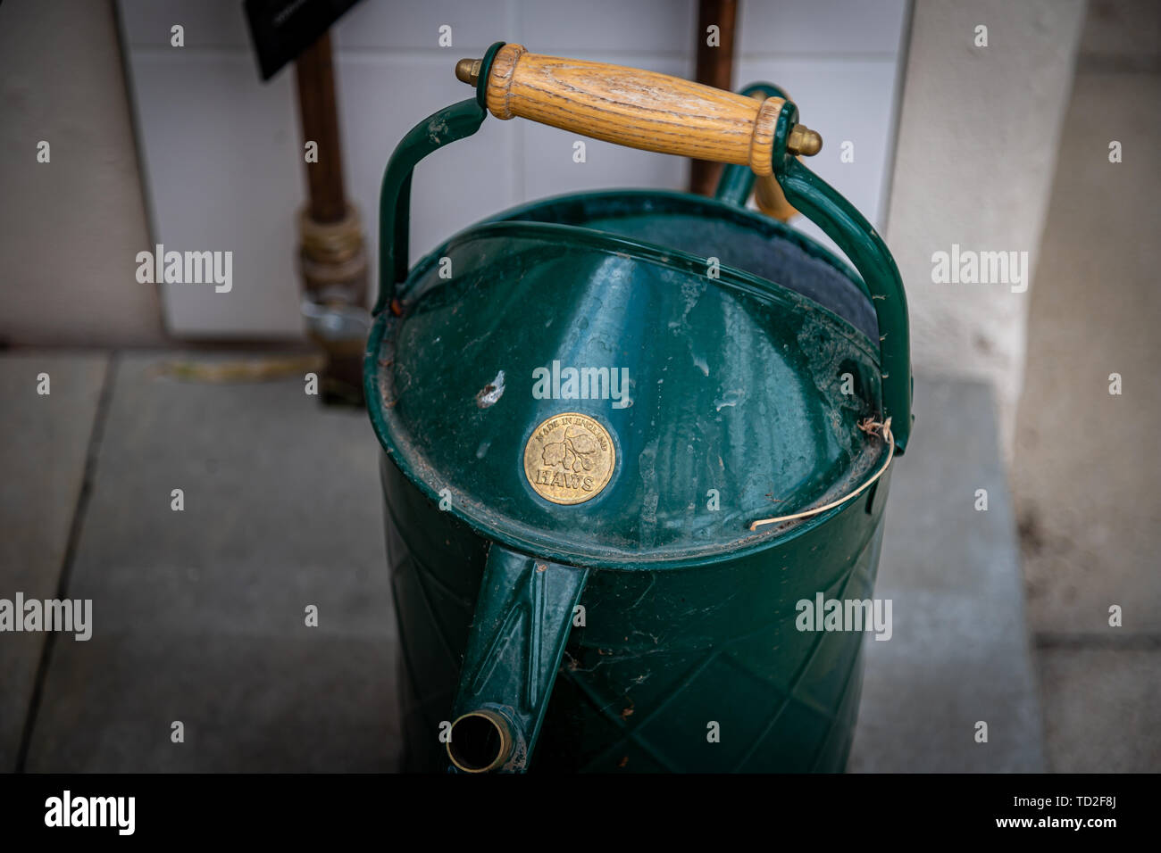 An old fashioned green water can ready for use in the Temperate House in Kew Gardens. - Stock Image