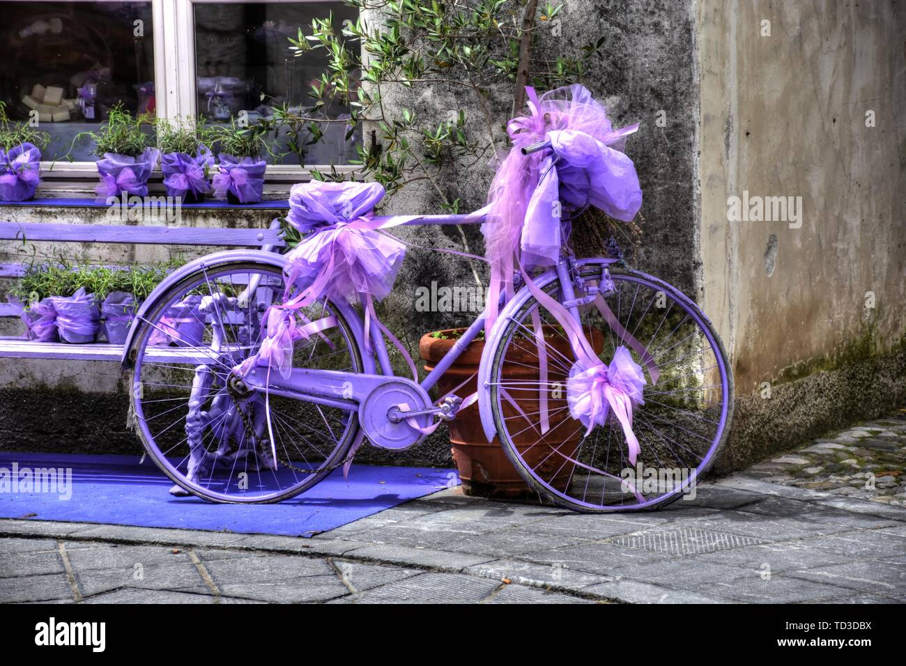Fahrrad, Rad, Violett, lackiert, Rad, Reifen, defekt, Kette, Dynamo, Speichen, Vollgummi, Vollgummireifen, abgestellt, Kettenschutz, Halterung, Masche - Stock Image