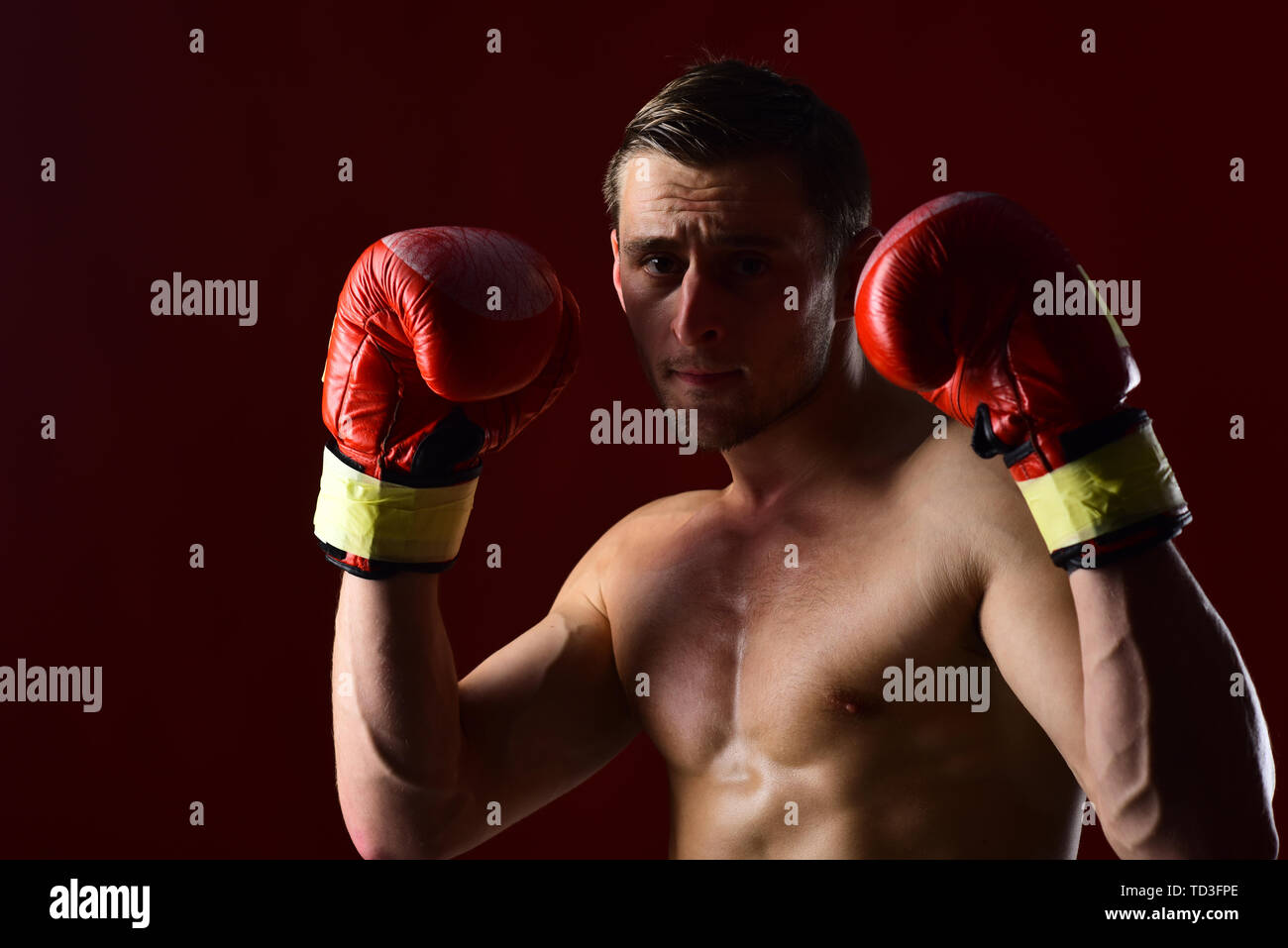 boxer training in boxing gloves. boxer. man boxer with muscular fit body. confident boxer punching at sport workout. man boxing - Stock Image