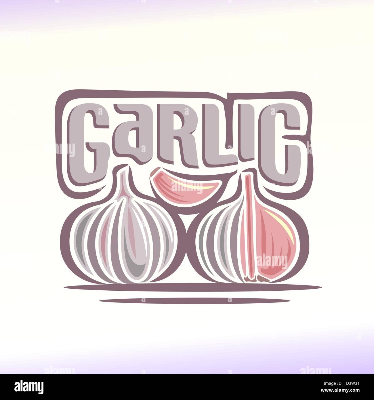Vector logo for garlic - Stock Vector