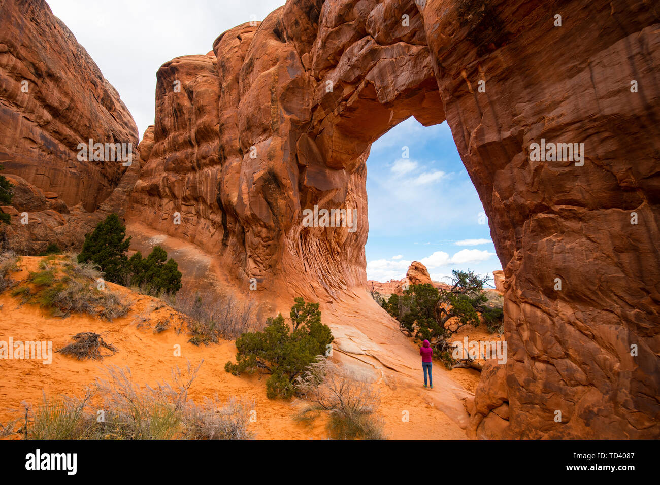 Arches National Park, Moab, Utah, United States of America, North America - Stock Image