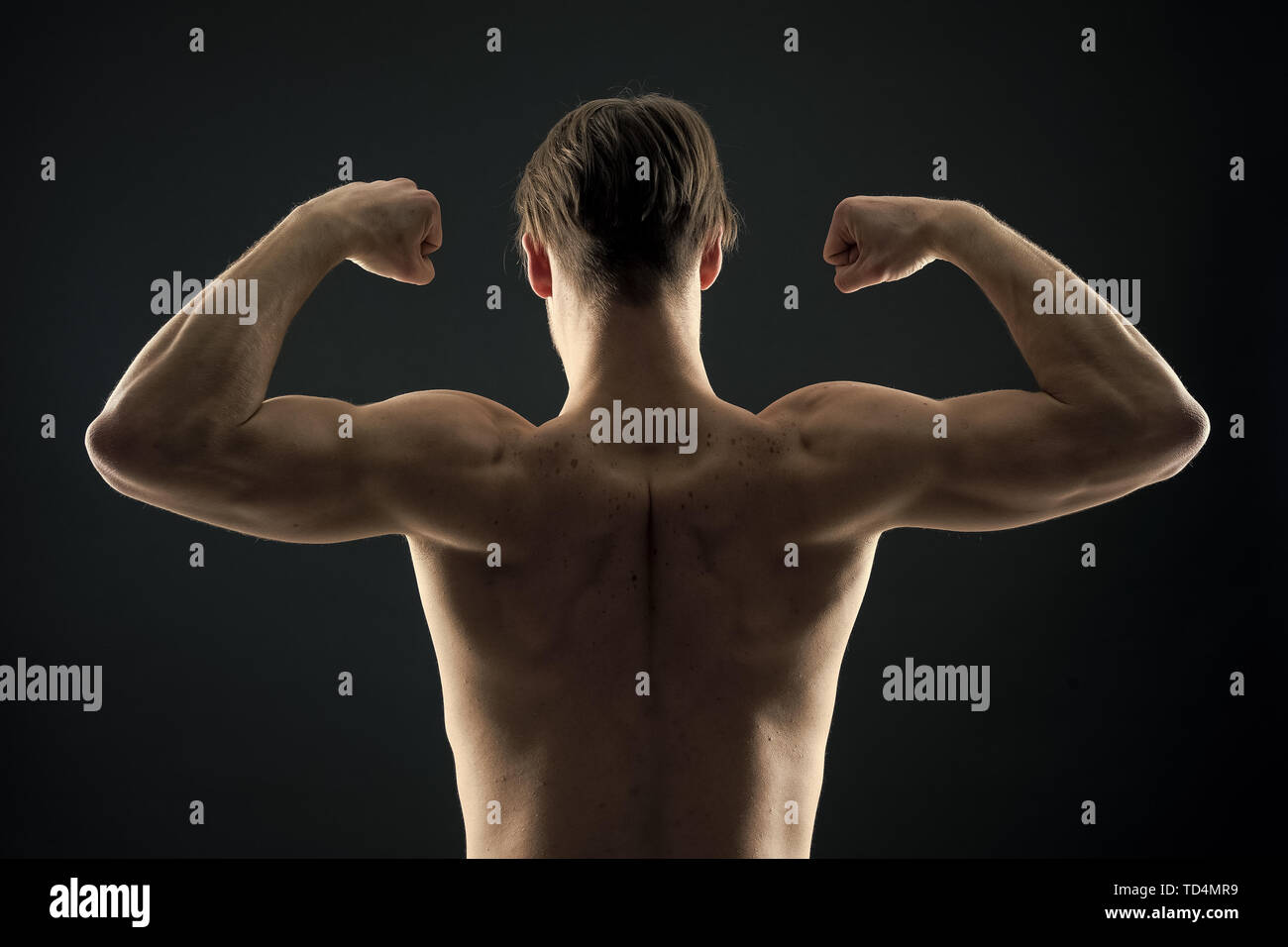 Athlete with fit torso, back view. Man bodybuilder flex arm muscles. Sportsman show biceps and triceps. Workout and training activity in gym. Power and strength concept. - Stock Image