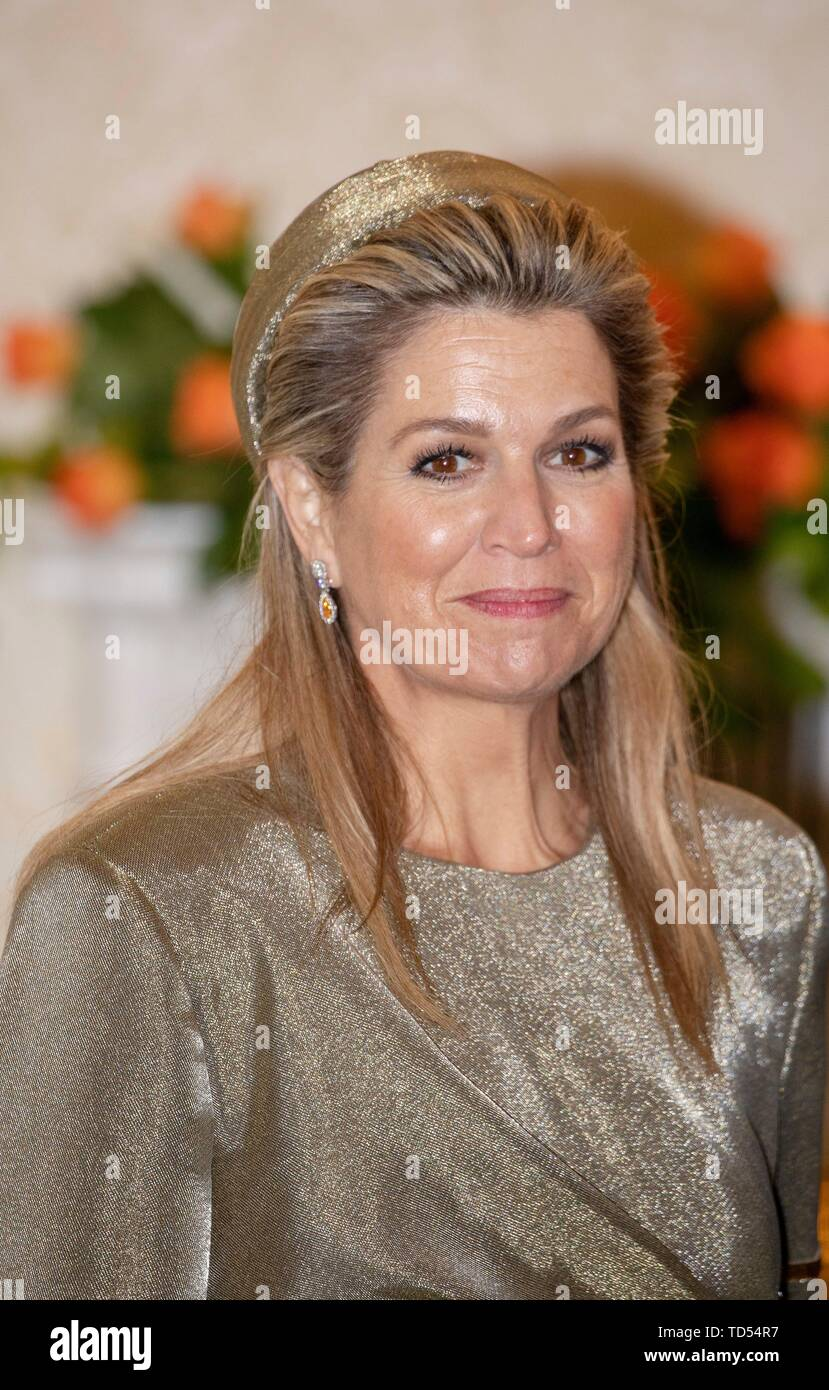 Dublin, Ireland. 12th June, 2019. Queen Maxima of The Netherlands are received by President Higgins and his wife Sabina Higgins at A?ras an Uachtara?in, the Presidential Palace in Dublin, on June 12, 2019, at the 1st of a 3 days State-visit to Ireland Photo : Albert Nieboer/ Netherlands OUT/Point de Vue OUT | Credit: dpa/Alamy Live News - Stock Image