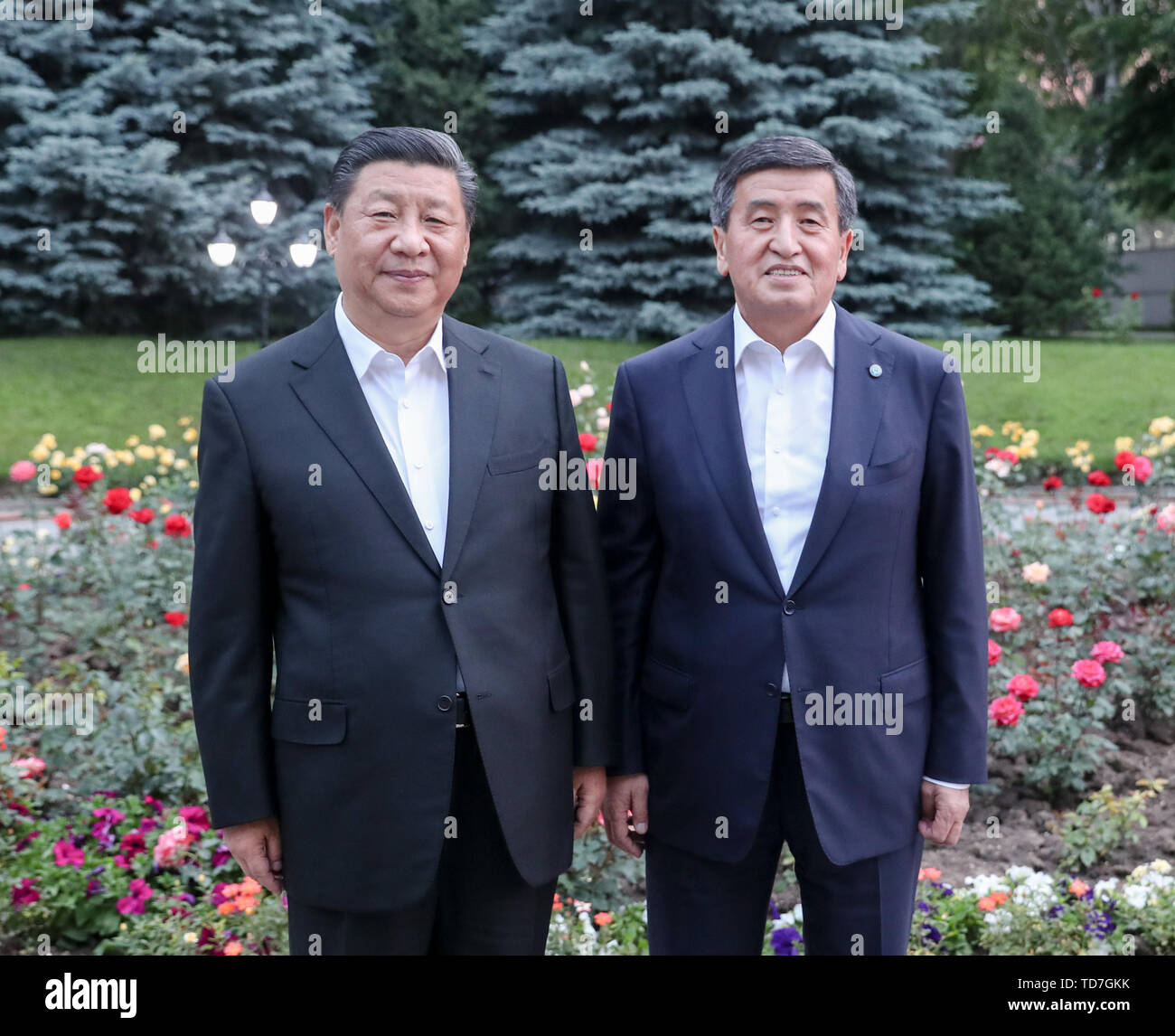 Bishkek, Kyrgyzstan. 12th June, 2019. Chinese President Xi Jinping and his Kyrgyz counterpart Sooronbay Jeenbekov have a meeting at the presidential residence right after the Chinese president arrives in Bishkek, Kyrgyzstan, June 12, 2019. Credit: Yao Dawei/Xinhua/Alamy Live News - Stock Image