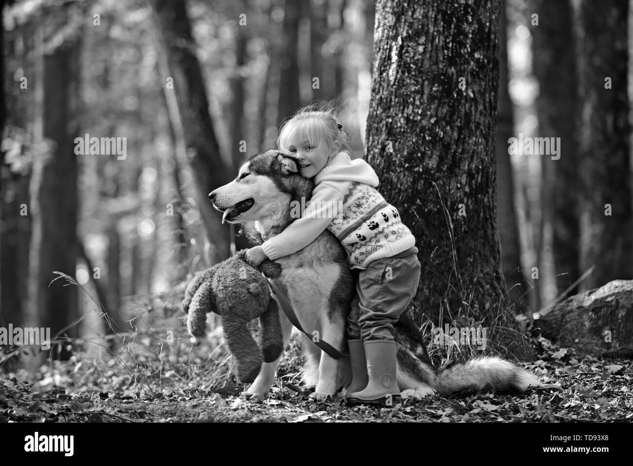 Little girl embracing husky dog in autumn park. - Stock Image