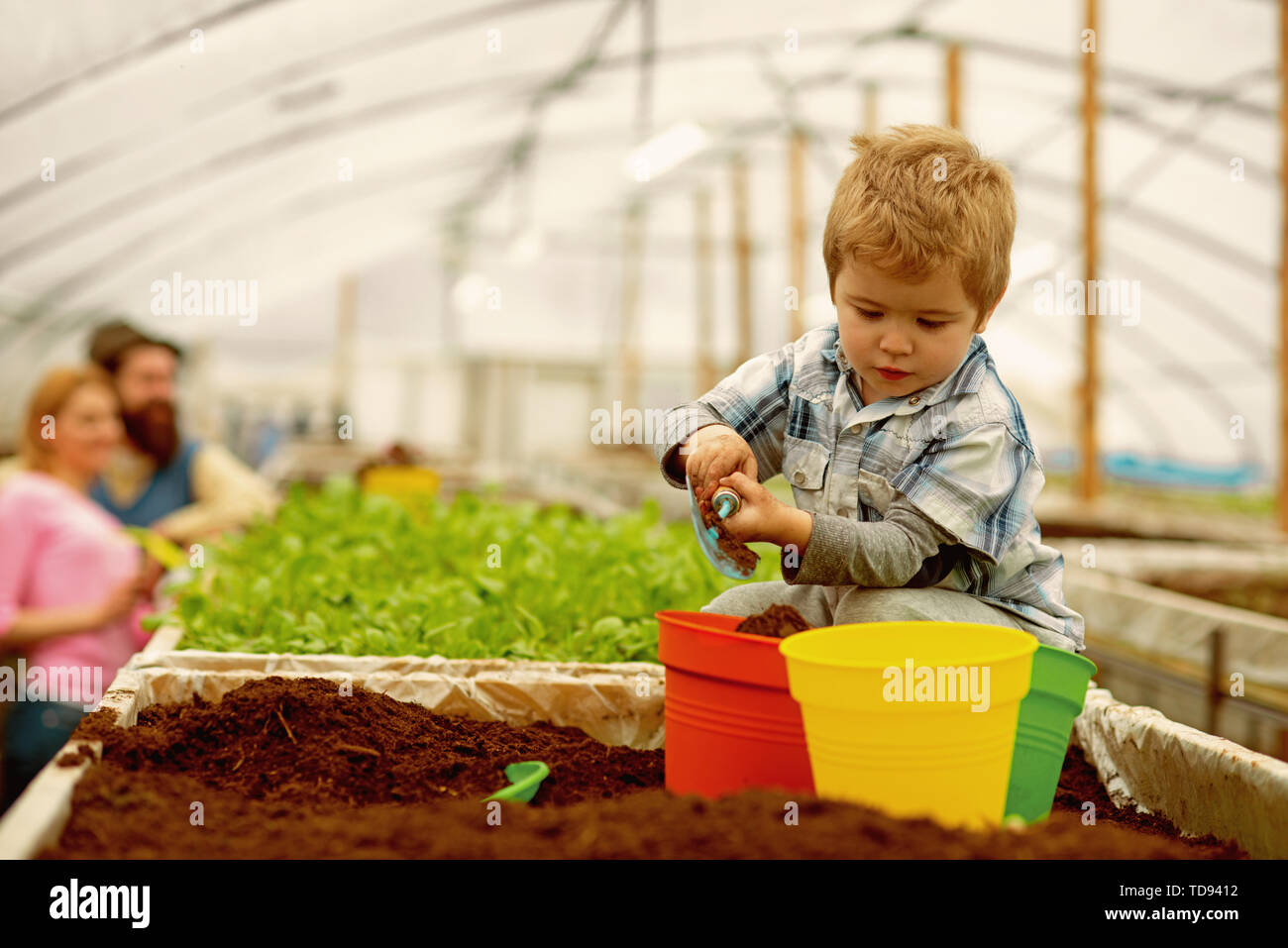 happy family. happy family workign with soil in garden. happy family in greenhouse. happy family in farm. new life - Stock Image