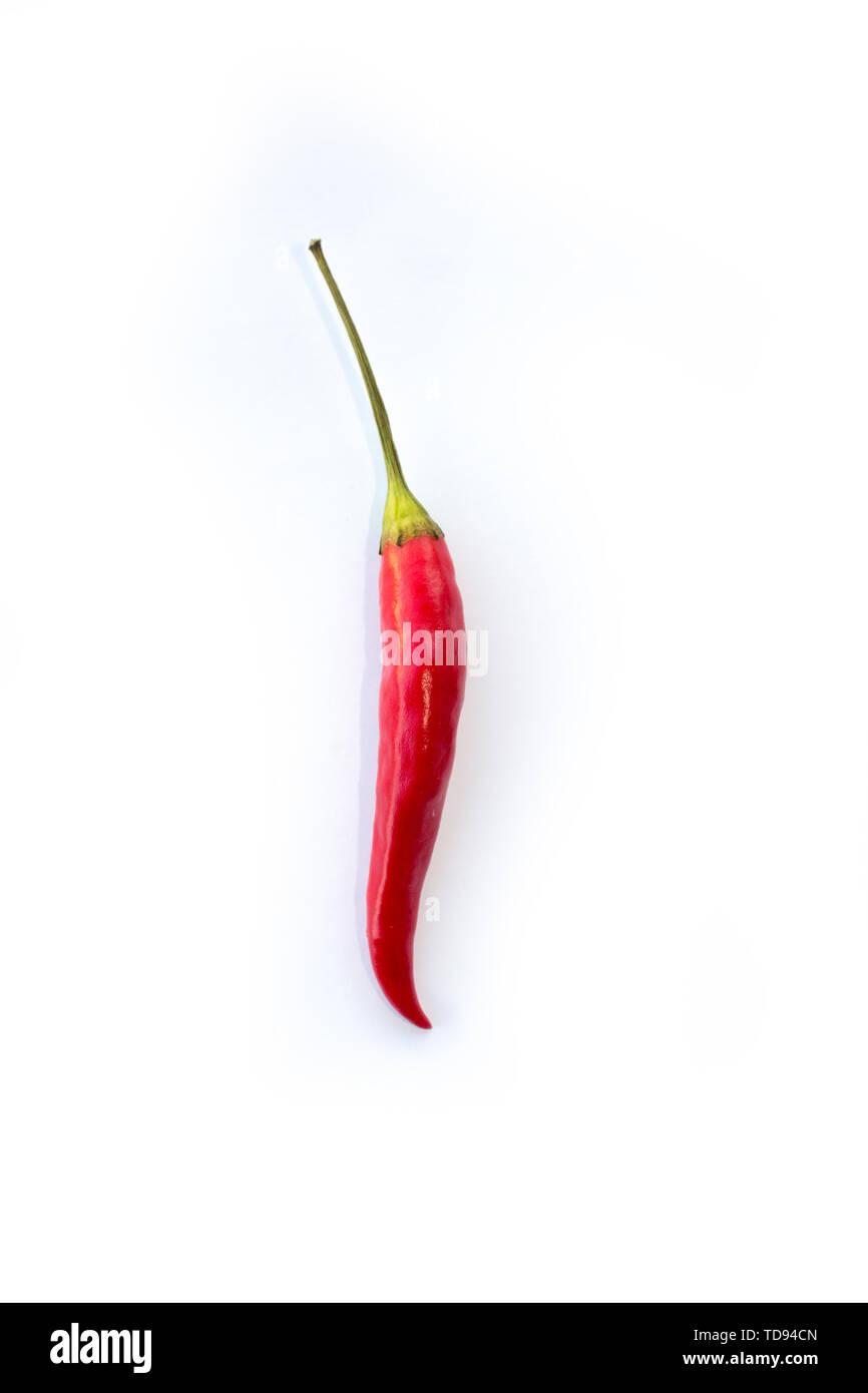red chili - Stock Image