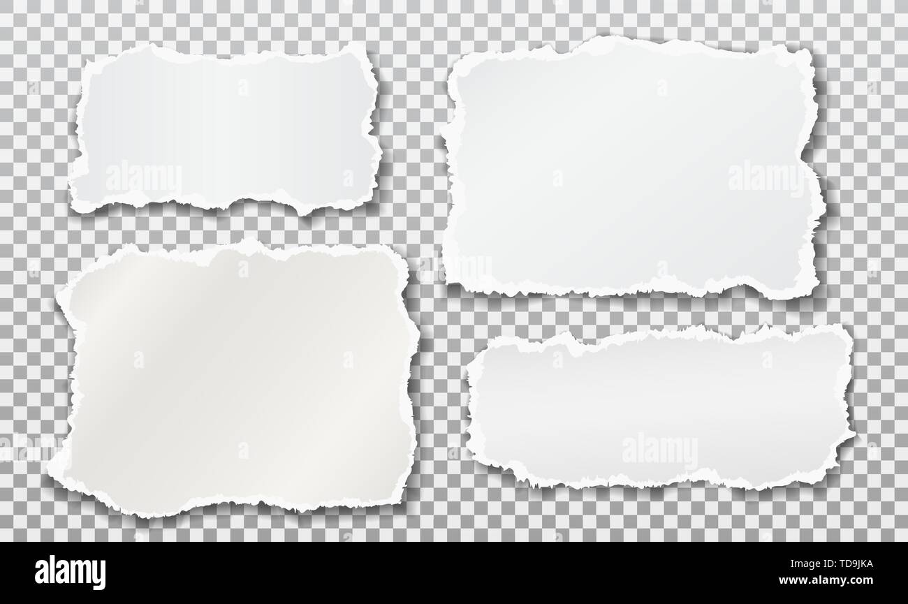 Set of torn white note, notebook paper strips stuck on squared background. Vector illustration - Stock Image