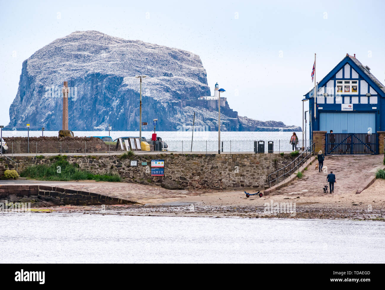 North Berwick, East Lothian, Scotland, United Kingdom, 14th June 2019. UK Weather: After East Lothian suffered heavy rain the last few days, the weather has brightened, A view of the largest gannet colony on Bass Rock from West Bay. Credit: Sally Anderson Credit: Sally Anderson/Alamy Live News - Stock Image