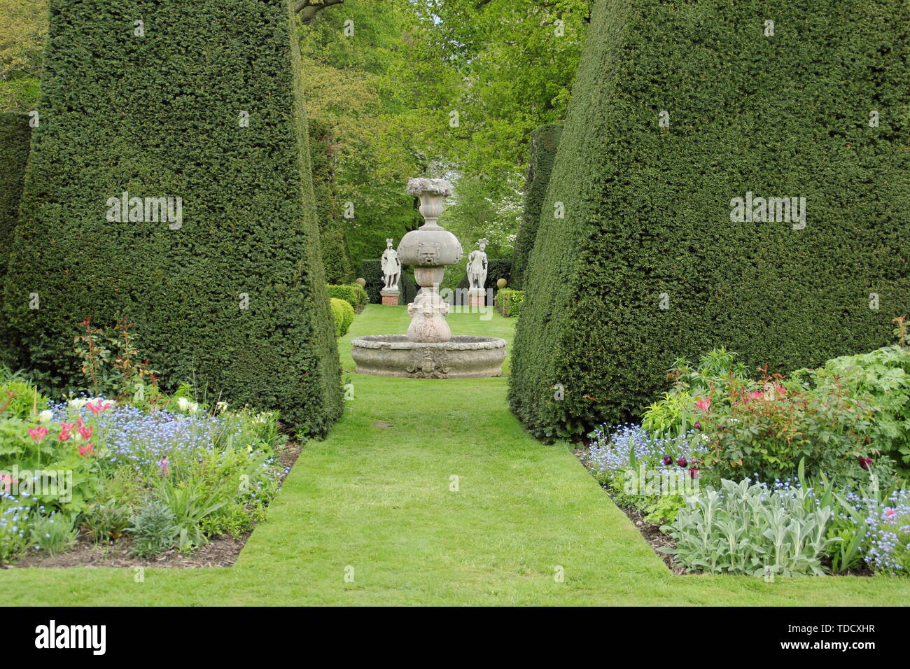 Taxus baccata. Statuary and herbacrous borders seen from yew hedging in the Italianate gardens at Renishaw Hall and Gardens, Derbyshire in May - Stock Image