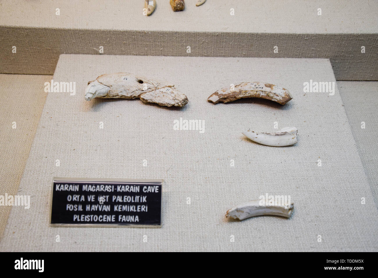 Antalya, Turkey - May 19, 2019: Exhibits of the Antalya Museum of Antiquities, stone scrapers and knives and pottery. - Stock Image