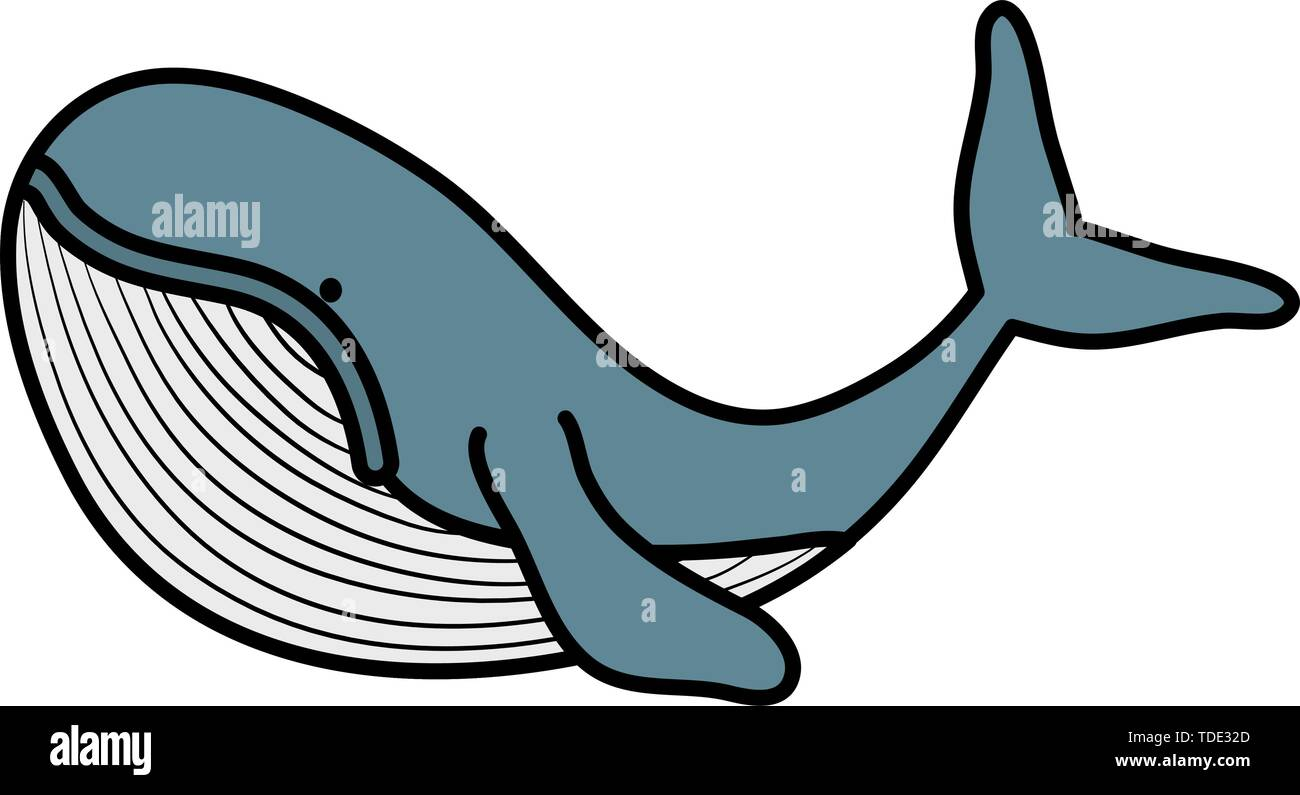 cute whale childish character vector illustration design - Stock Image