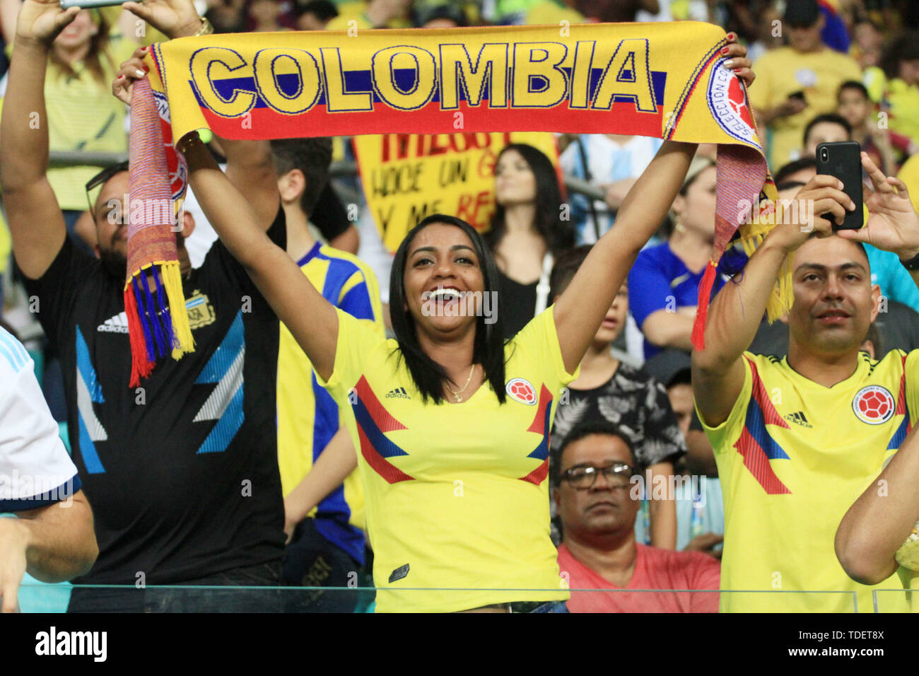 Salvador, Brazil. 15th June, 2019. Colombian fan during match between Argentina and Colombia, game 03, valid for the group phase of Copa América 2019, held this Saturday, 15, at the Arena Fonte Nova in Salvador, BA. Credit: Mauro Akiin Nassor/FotoArena/Alamy Live News - Stock Image