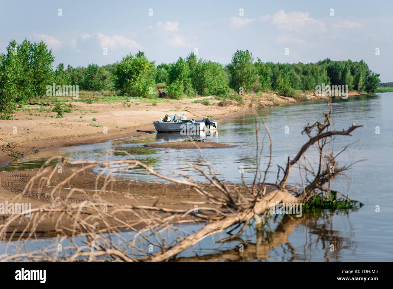 The motor boat is anchored on a sandy island with green summer and grass in the river in the foreground an old wooden snag - Stock Image