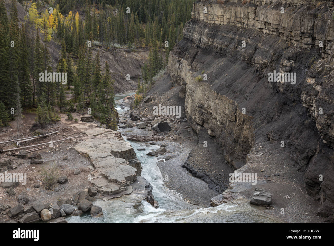 Waterfall, Canyon, Crescent Falls, Kootenay Plains, Alberta, Canada Stock Photo