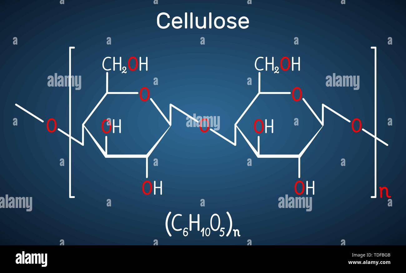 Cellulose polysaccharide molecule. Structural chemical formula on the dark blue background. Vector illustration - Stock Vector