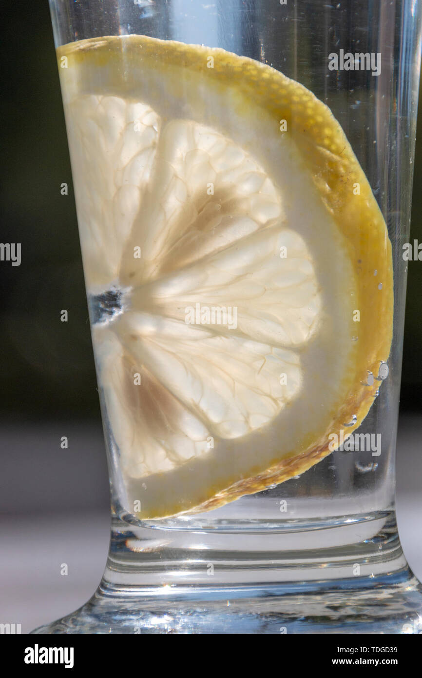 A close up view of a glass with water, a slice of lemon and ice cubes on a white metal table outside in the garden - Stock Image