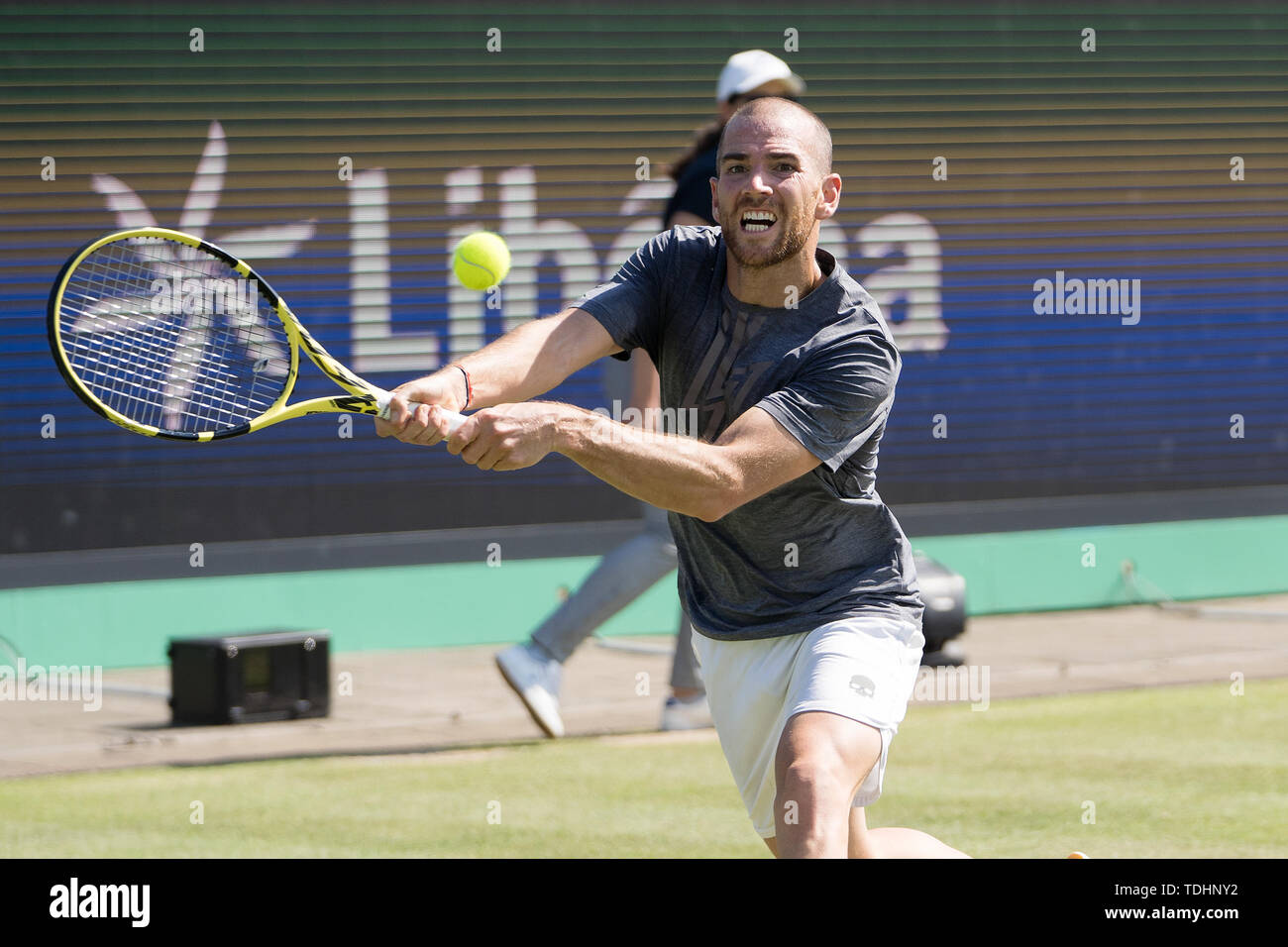 16 june 2019 Rosmalen, The Netherlands Tennis Libema Open  Adrian Mannarino (FRA) - Stock Image