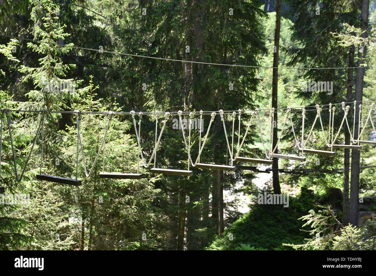 Saalbach-Hinterglemm, Wald, Kletterpark, Seil, Steg, Sport, sportlich, Salzburg, Baum, Wald, Baumstamm, Plattform, Sicherung, Seile, klettern, Brett, - Stock Image