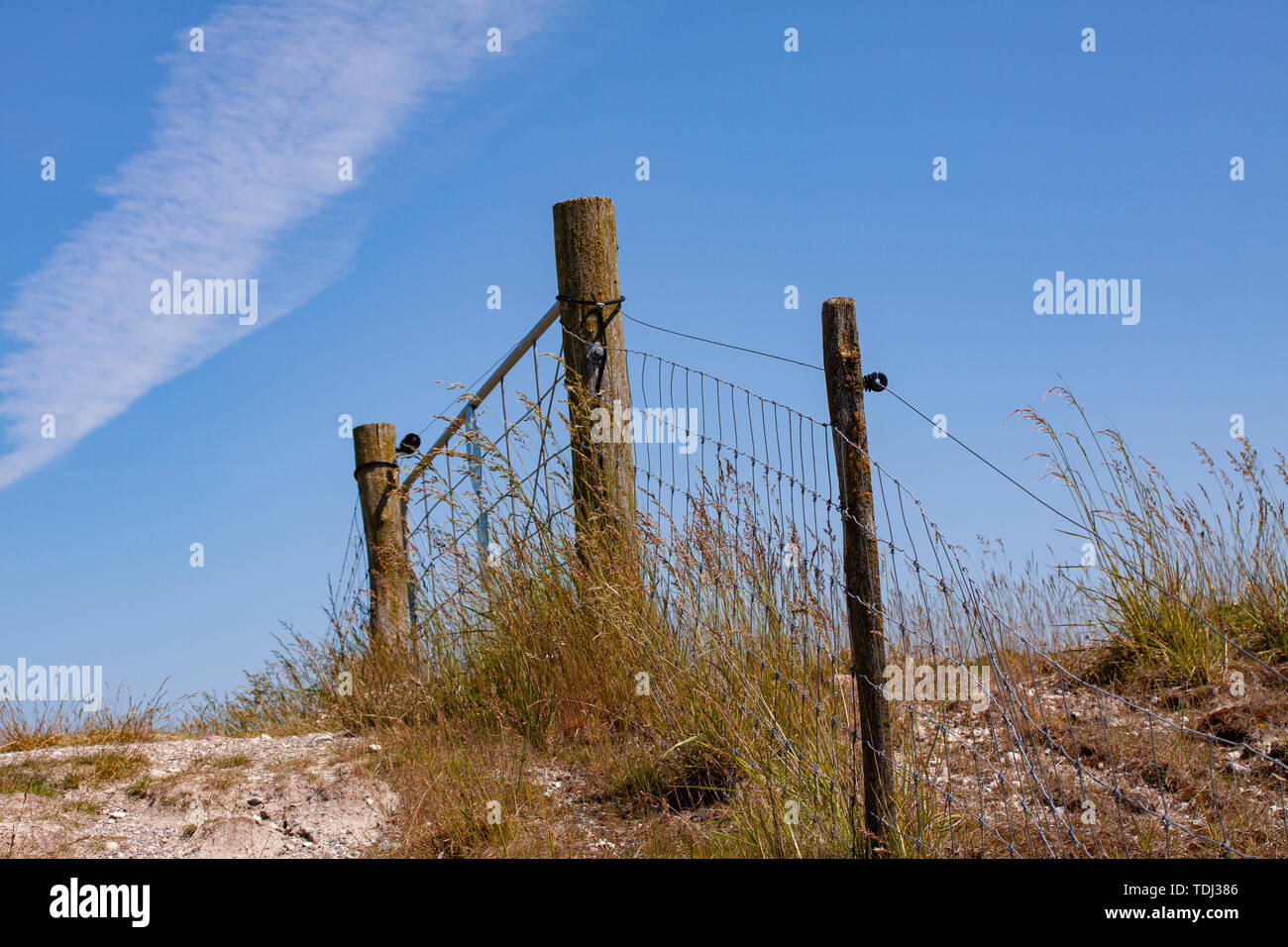 Old wire fence in nature with wooden posts on a sunny day against a blue sky. - Stock Image