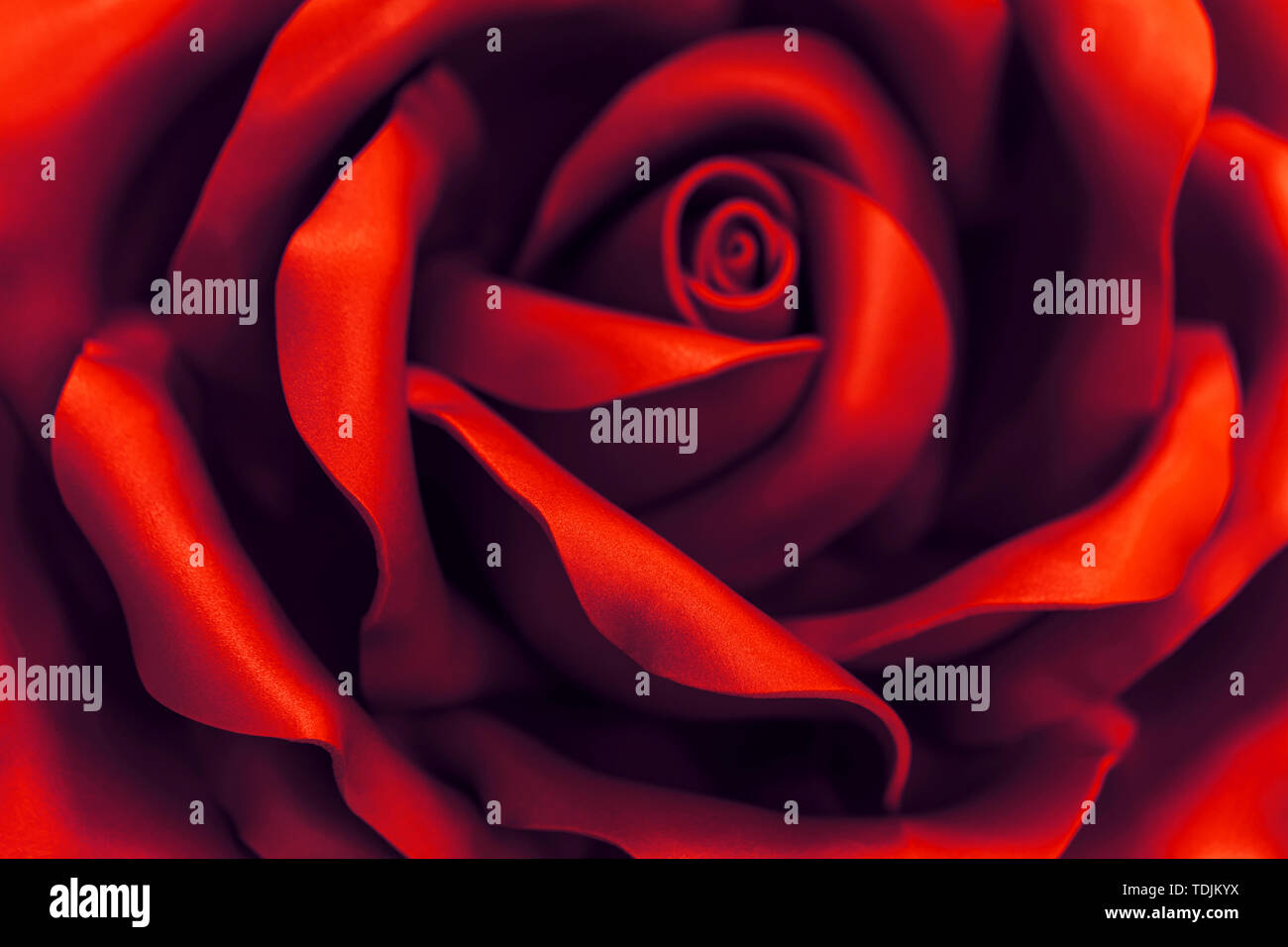 Beautiful red flower made of synthetic material . Abstract blurred background - Stock Image