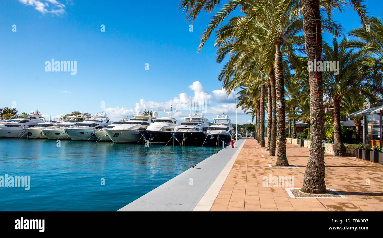 Portals Nous yatch bay in Mallorca, Spain - Stock Image