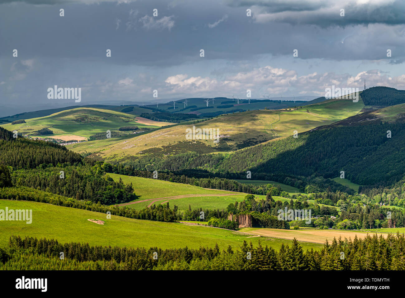 Selkirk, Scottish Borders, UK. 10th June 2019. Looking north from Peat Law (426m) on the Southern Upland Way, across Yair and the Tweed Valley to the  - Stock Image