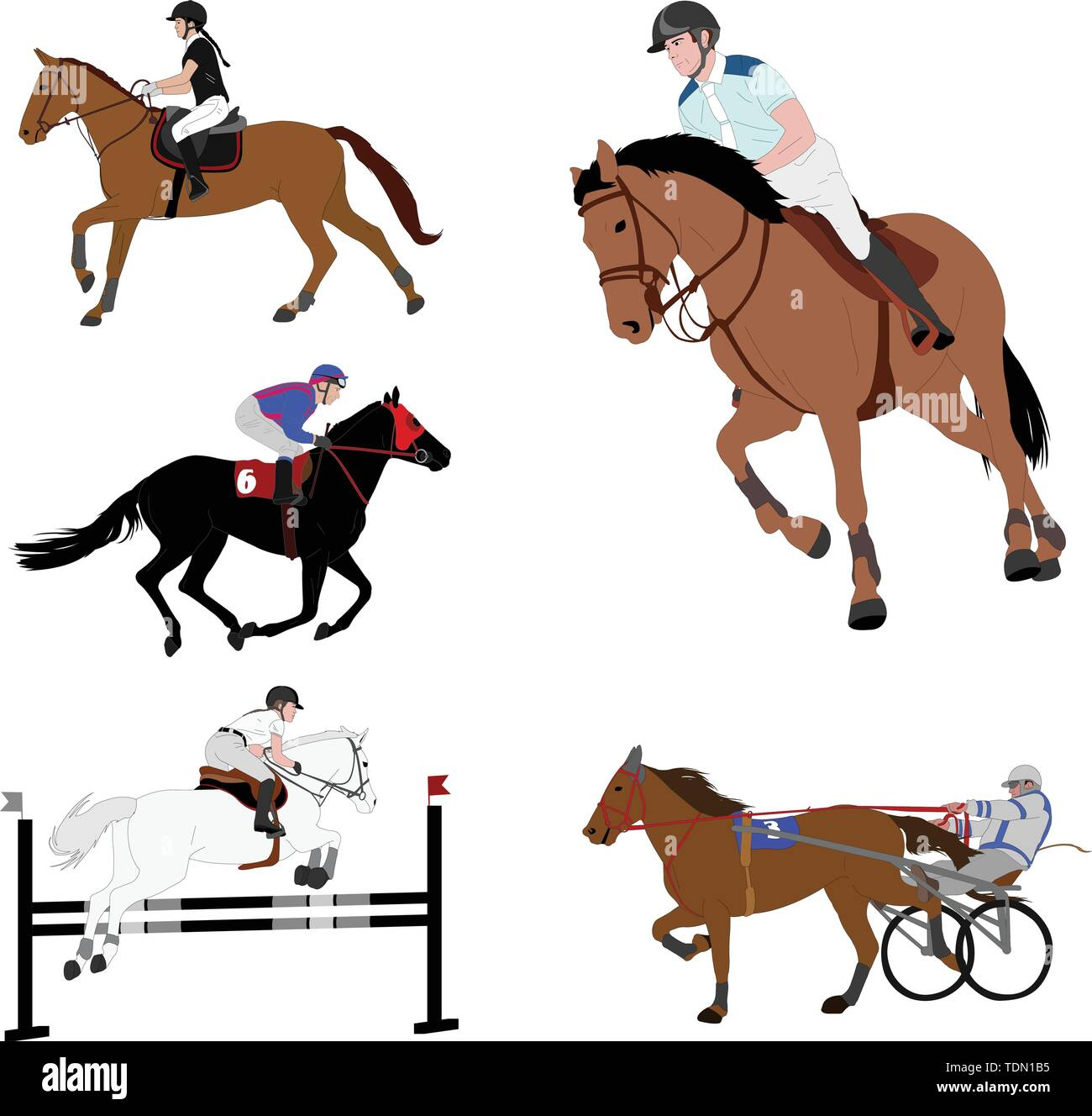 equestrian sports. dressage,jump show,gallop,harness racing - vector - Stock Vector