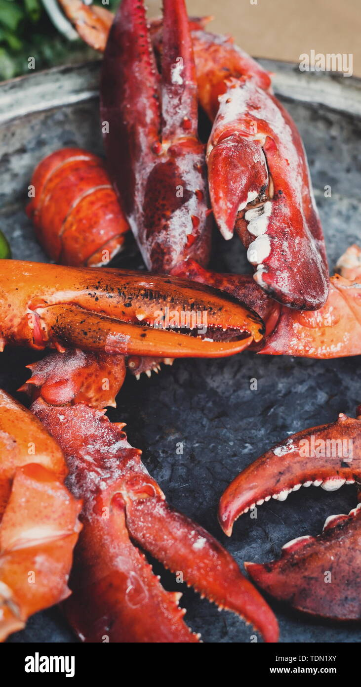 Fresh grilled lobster claws at grill pan outdoors - Stock Image