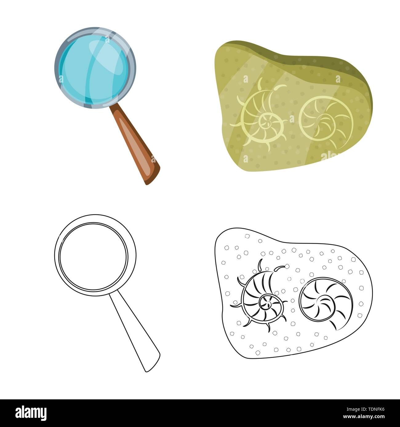 Isolated object of story and items symbol. Set of story and attributes vector icon for stock. - Stock Image