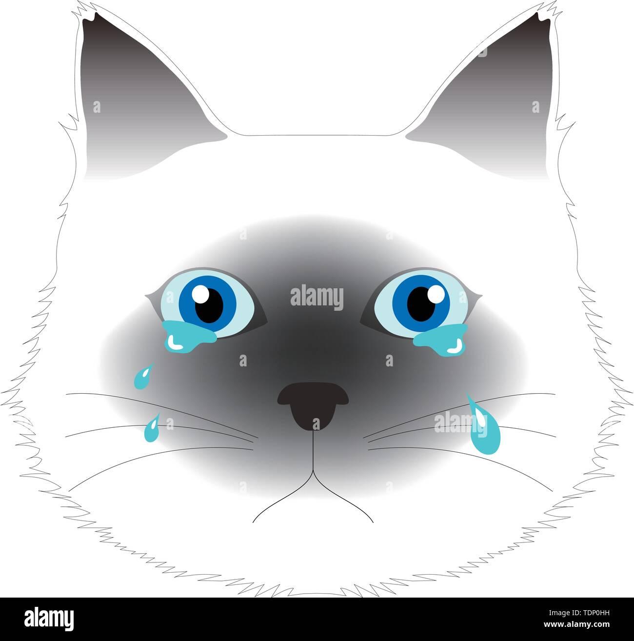 Crying Birman cat, computer graphics, cg, vector, vectors Stock Vector