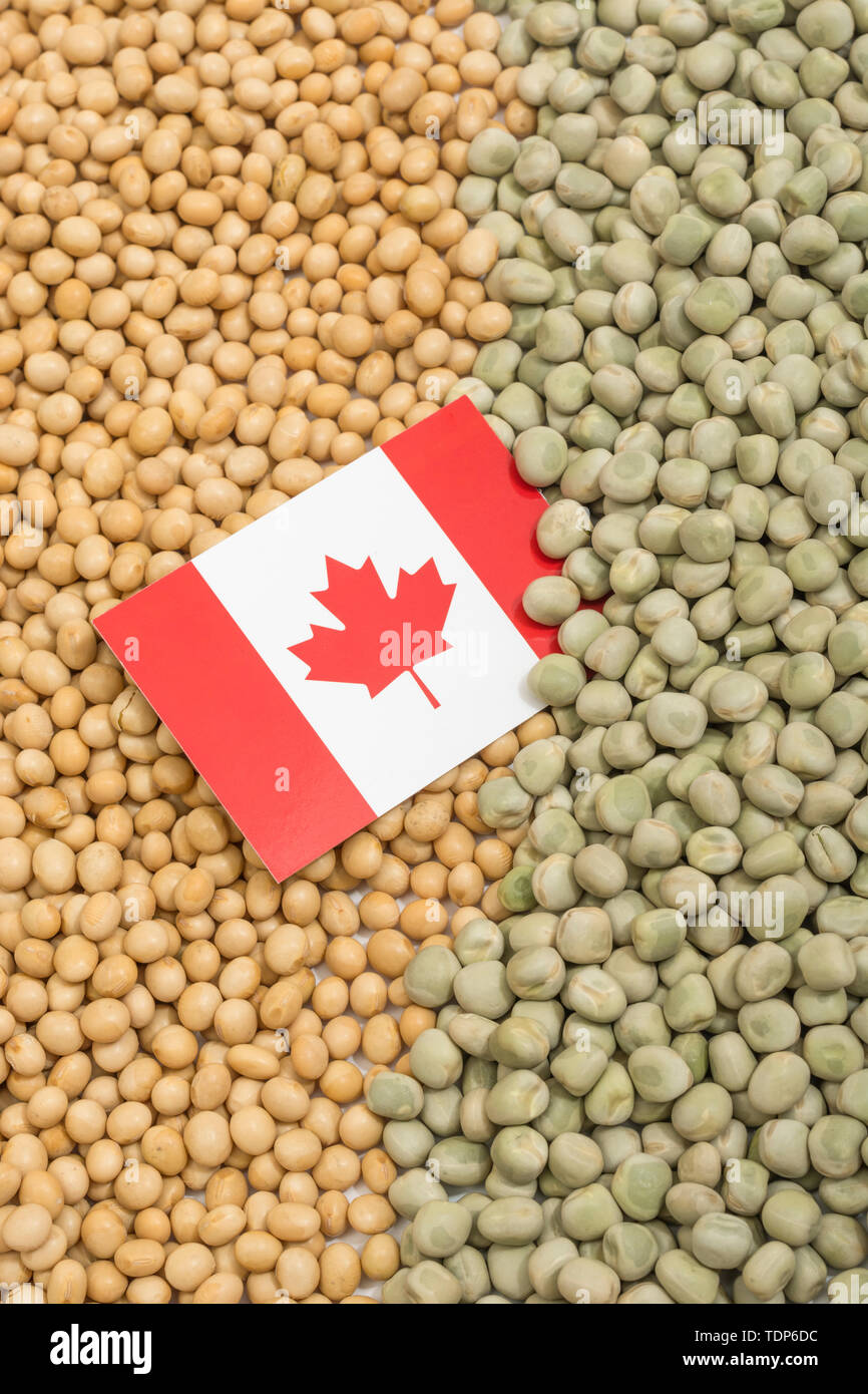 Canadian flag with dried soy beans and dried peas. Canadian producers have faced obstacles obstacles of farm goods entering China. - Stock Image