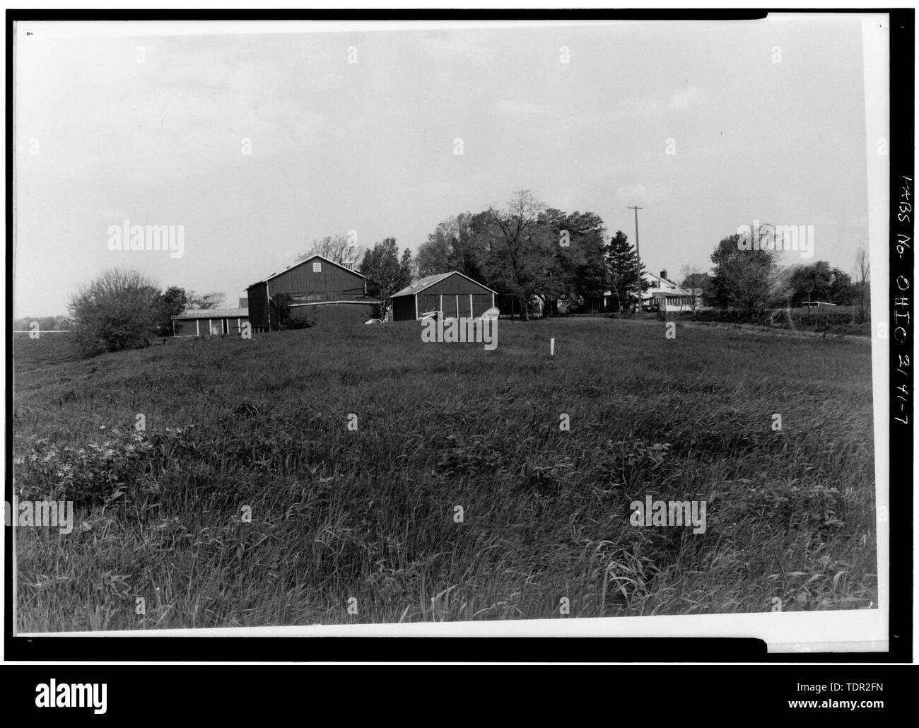 Photograph of photograph, circa 1971. Original print in Field Records. LOOKING WEST TOWARDS BARNS. - Abbott-Page House, Mason Road, State Route 13 vicinity, Milan, Erie County, OH - Stock Image
