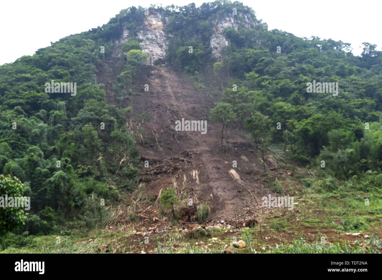 Changning. 18th June, 2019. Photo taken on June 18, 2019 shows a landslide after earthquake at Jinji Village of Shuanghe Town, Changning County of Yibin City, southwest China's Sichuan Province. Twelve people died and another 125 were injured after a 6.0-magnitude earthquake hit Changning County Monday night, China's Ministry of Emergency Management said on Tuesday. Credit: Chen Di/Xinhua/Alamy Live News - Stock Image