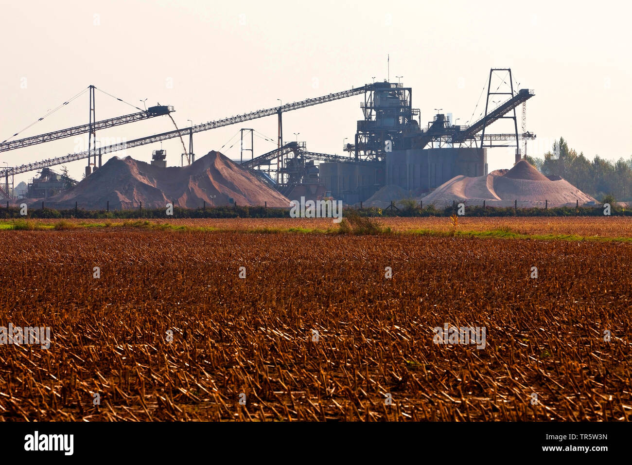 harvested maize field in front of gravel plant, Germany, North Rhine-Westphalia, Ruhr Area, Wesel - Stock Image