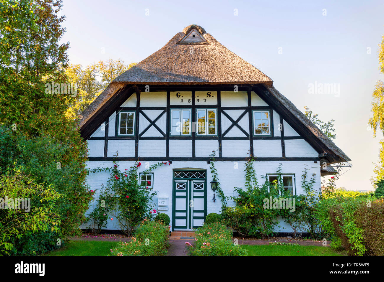 thatched-roof timber-framed house  Sieseby at Schlei, Germany, Schleswig-Holstein Stock Photo