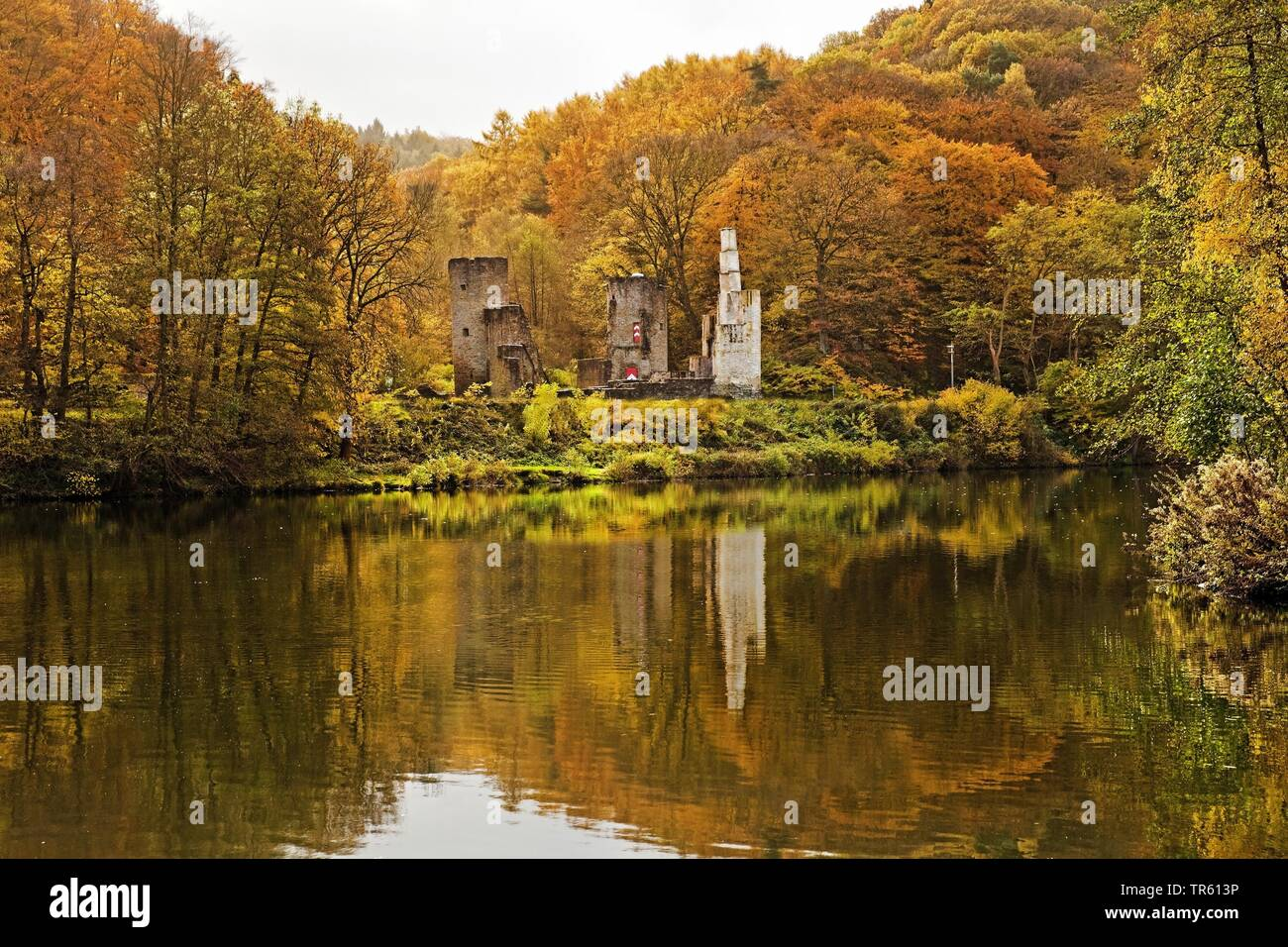 Hardenstein castle ruin on the Ruhr riverbank in autumn, Germany, North Rhine-Westphalia, Ruhr Area, Witten Stock Photo