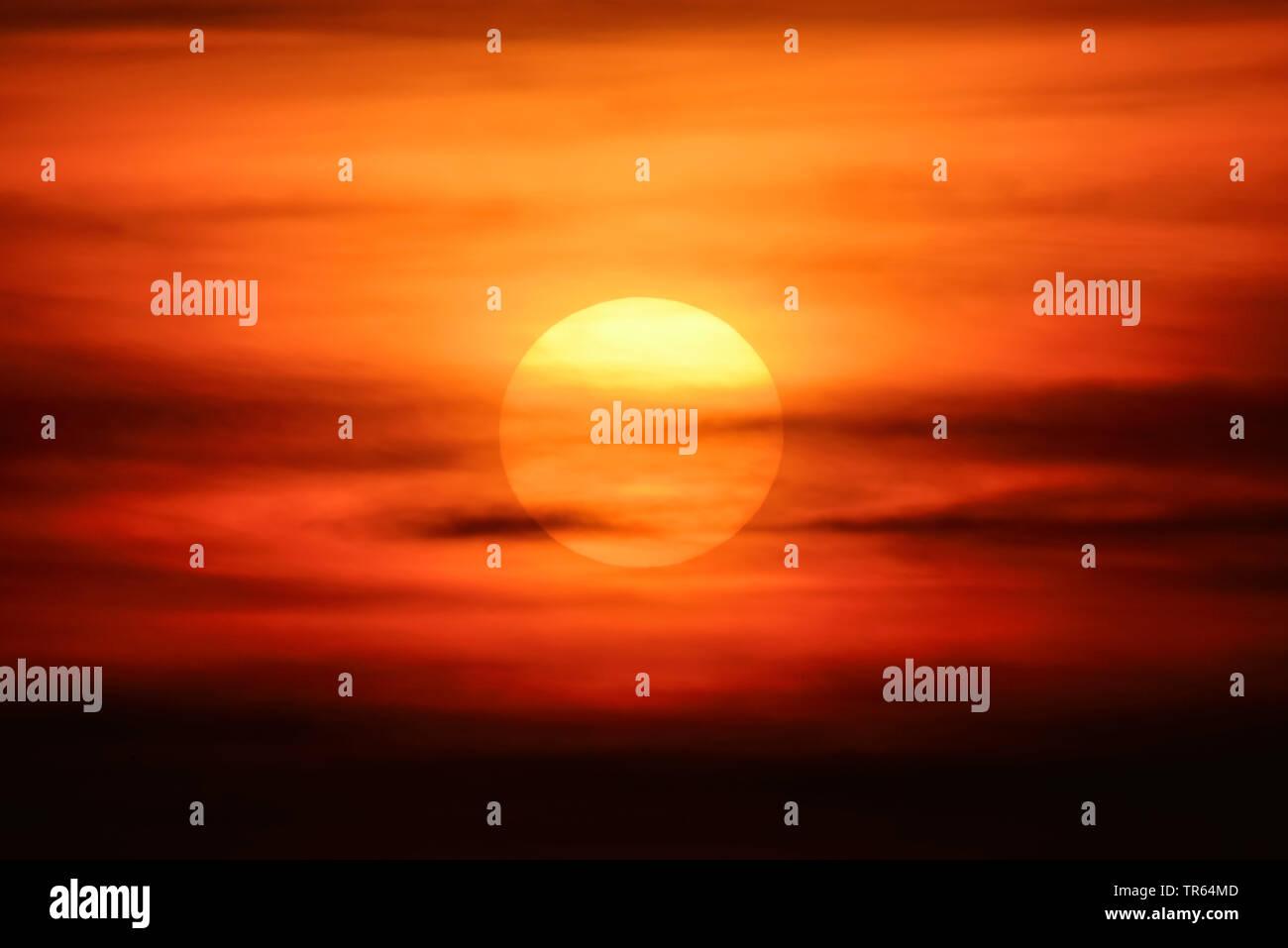 untergehende Sonne in Hamburg, Deutschland, Hamburg   sunset in Hamburg, Germany, Hamburg   BLWS473497.jpg [ (c) blickwinkel/McPHOTO/C. Ohde Tel. +49 - Stock Image