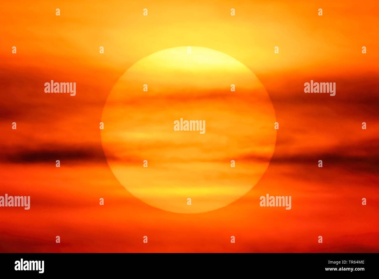 untergehende Sonne in Hamburg, Deutschland, Hamburg   sunset in Hamburg, Germany, Hamburg   BLWS473498.jpg [ (c) blickwinkel/McPHOTO/C. Ohde Tel. +49 - Stock Image