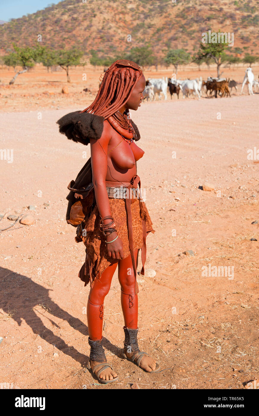 junge Himbafrau mit traditoneller Frisur, Namibia | young Himba woman with traditional hair style, Namibia | BLWS474284.jpg [ (c) blickwinkel/McPHOTO/ - Stock Image