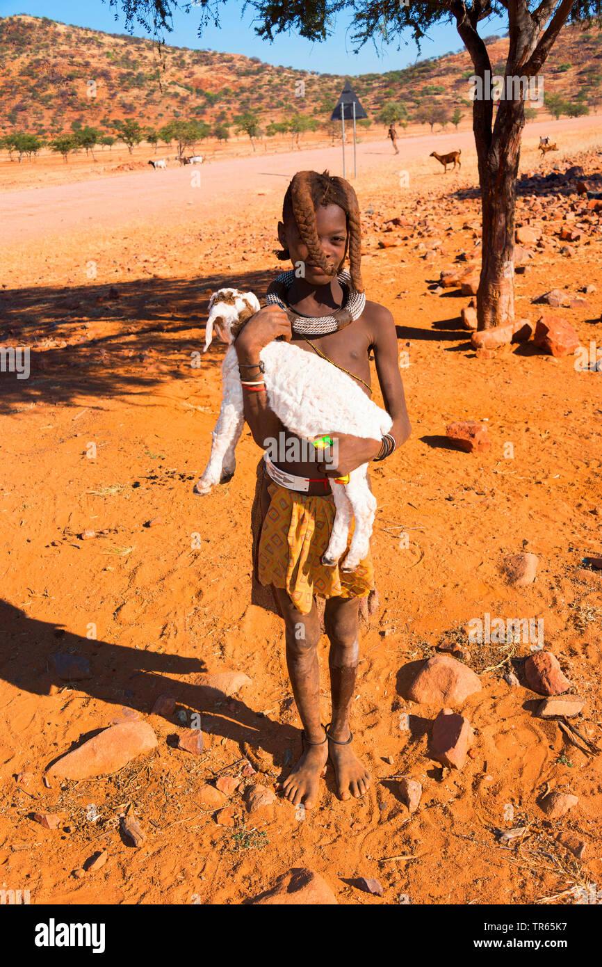 junges Himbamaedchen traegt ein Lamm, Namibia | young Himba girl carrying a lamb, Namibia | BLWS474286.jpg [ (c) blickwinkel/McPHOTO/F. Scholz Tel. +4 - Stock Image