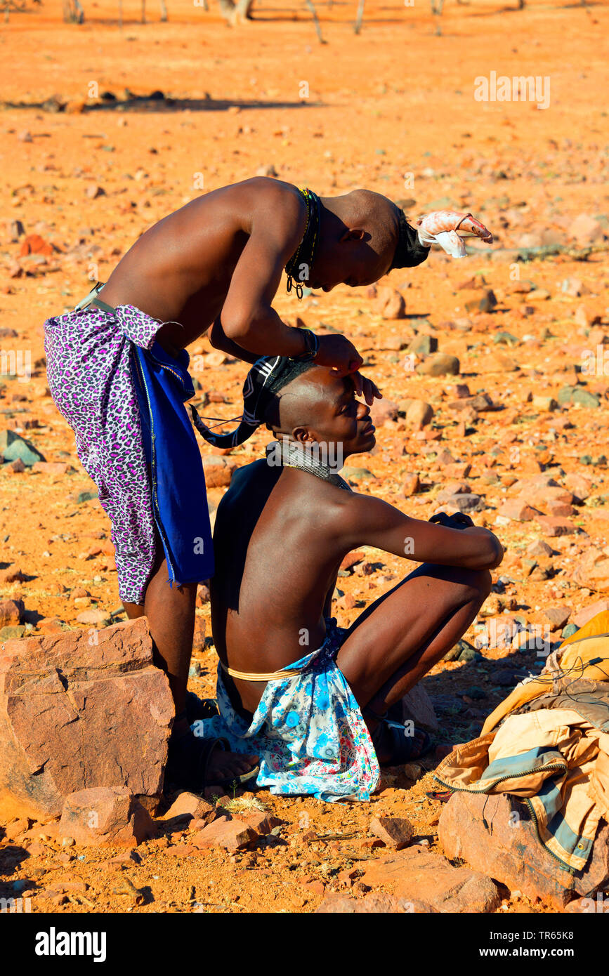 Himbamann schneidet die Haare, Namibia | Himba man cutting the hair, Namibia | BLWS474287.jpg [ (c) blickwinkel/McPHOTO/F. Scholz Tel. +49 (0)2302-279 - Stock Image