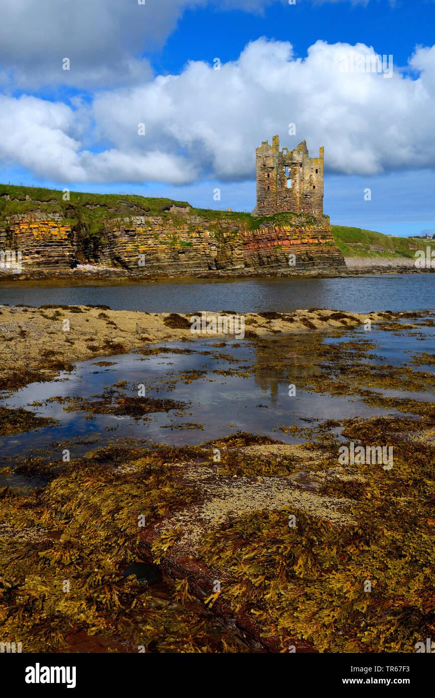 Burgruine des Keiss Castle an der Meereskueste, Grossbritannien, Schottland, Caithness | castle ruin of keiss castle at the coastline, United Kingdom, - Stock Image