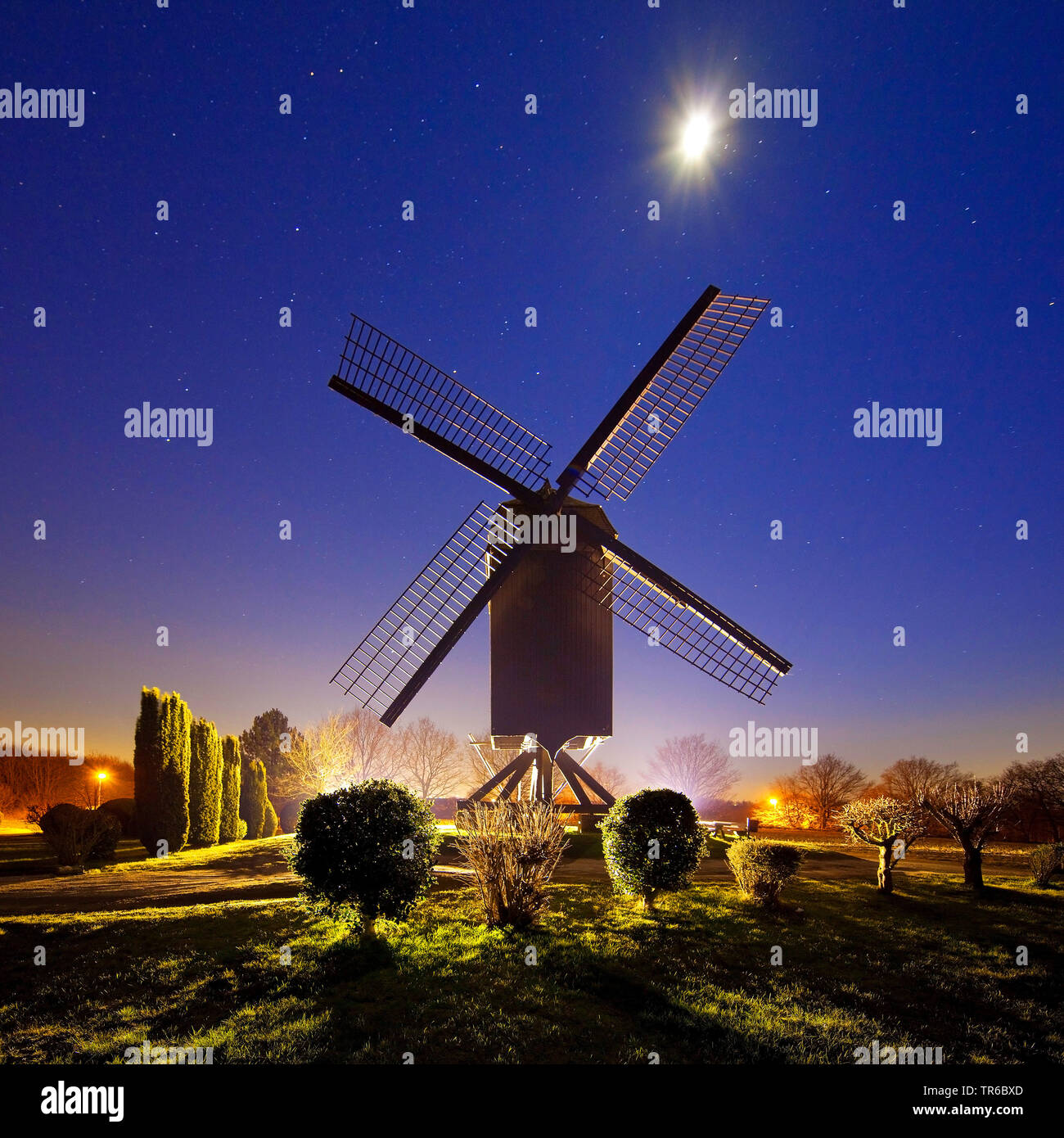 Bockwindmuehle in Toenisberg mit Vollmond, Deutschland, Nordrhein-Westfalen, Niederrhein, Kempen | post mill in Toenisberg with full moon, Germany, No Stock Photo
