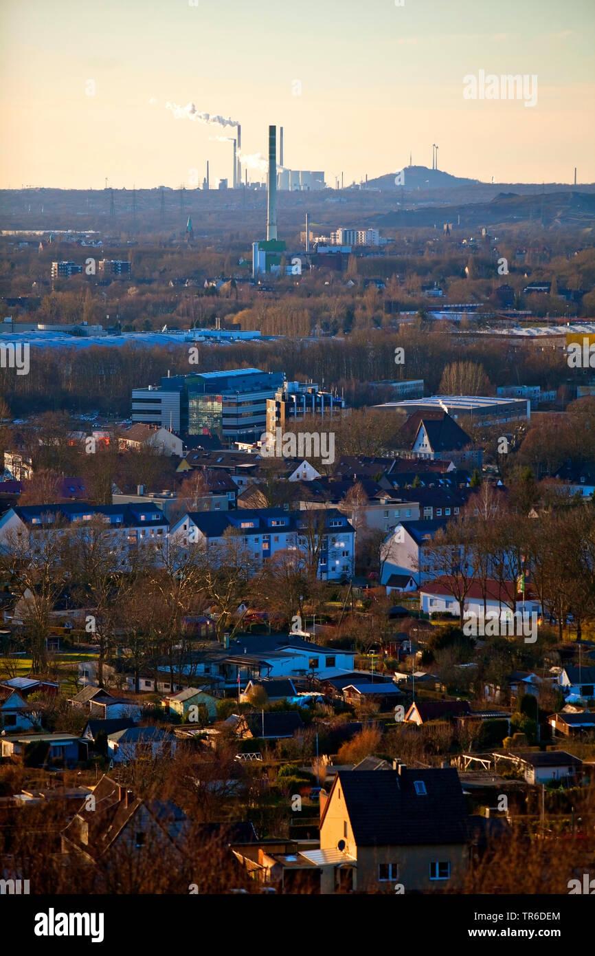 Blick vom Tippelsberg auf die Halde Scholven, Deutschland, Nordrhein-Westfalen, Ruhrgebiet, Bochum | view from Tippelsberg mountain to spoil tip Obers - Stock Image