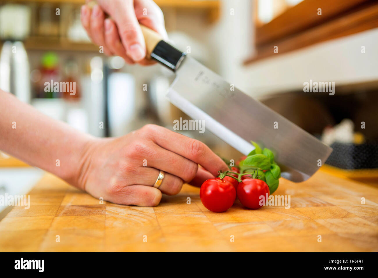 garden tomato (Solanum lycopersicum, Lycopersicon esculentum), cocktail tomatoes with tulsi and kitchen knife on a wooden board, Germany - Stock Image