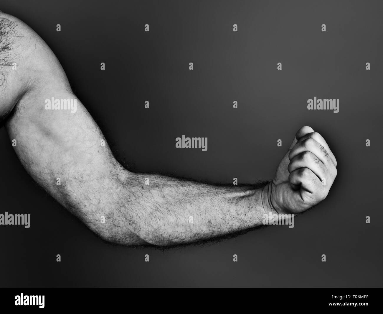 nackter Arm mit geballter Faust, Deutschland | black and white photo of an arm flexing muscles, Germany | BLWS487249.jpg [ (c) blickwinkel/McPHOTO/M. - Stock Image